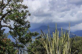 Sugar cane Museum, Hacienda Piedechinche, Valle del Cauca