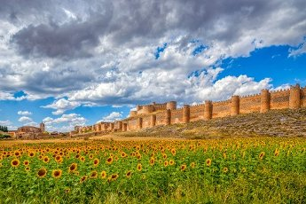 Castle of Berlanga de Duero, province of Soria