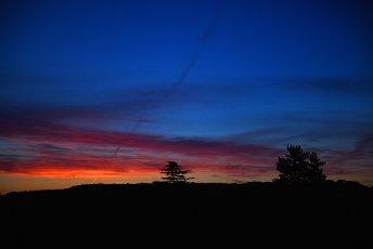 13 July 2020, North Rhine-Westphalia, Duesseldorf: Sunrise over the Grafenbergerwald. Photo: Horst Ossinger