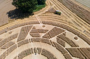 12 August 2020, Bavaria, Pähl: A farmer drives with a combine harvester near Pähl over a field with a crop circle. (Aerial view with a drone) Photo: Sven Hoppe\/dpa