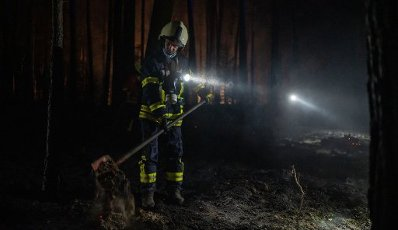 12 August 2020, Lower Saxony, Essel: A fireman works with a shovel to extinguish nests of embers in a piece of forest. Because of a large scale fire in the Heidekreis, the weekend area Esseler Wald has been evacuated in the evening according to police reports. Photo: Philipp Schulze\/dpa