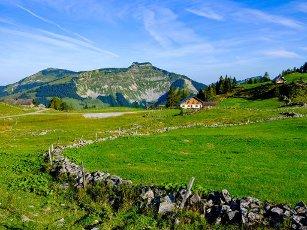 Alpine pasture area, Osterhorn Group, Salzburger Land, Austria