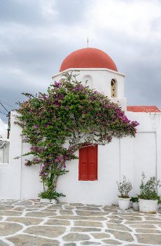White Greek Orthodox Church of St, Nicholas with red roof and bougainvillea, Chora, Mykonos Town, Mykonos, Cyclades, Aegean Sea, Greece