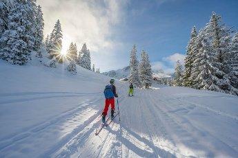 Two ski tourers between snowy trees, ascent to Kreuzeck, Wetterstein mountains, Garmisch-Partenkirchen, Bavaria, Germany
