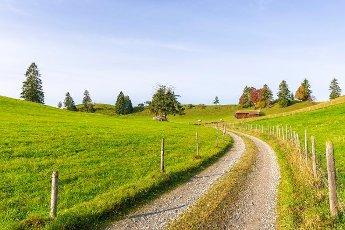 Landscape near Rieden am Forggensee, Ostallgäu, Allgäu, Swabia, Bavaria, Germany