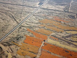 Aerial photos taken by a drone show the drying of 1 million mu of corn fields during the autumn harvest in Zhangye City, northwest China\'s Gansu Province, 1st October 2020