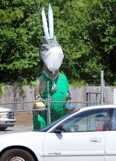 Dino, the T-rex located at Clayton & Sons salvage yard on US-17-92 in Debary, Fla., dons a coronavirus mask and bunny ears, reflecting the historic circumstances of Easter weekend 2020, photographed Thursday, April 9, 2020. The 800-pound aluminum statue has his own Facebook page and is a landmark in the town northeast of Orlando. (Joe Burbank/Orlando Sentinel/TNS)