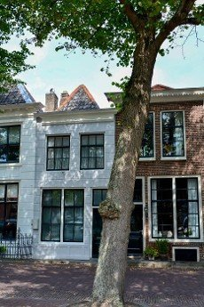 Typical house facade with a large tree in the old town ZIERIKZEE on Zeeland \/ Netherlands
