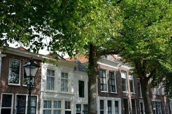 Typical house facade with  large green  trees in the old town ZIERIKZEE on Zeeland \/ Netherlands