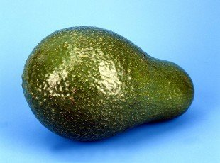 Avocado,  Persea americana,  Exotische Frucht,  Südfrüchte.