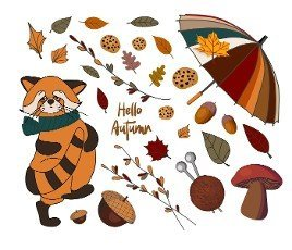 set of autumn icons: red panda,  falling leaves,  cozy food,  nuts,  mushrooms and pumpkin. Scrapbook collection of autumn season elements. Bright set for harvesting. Autumn stickers.