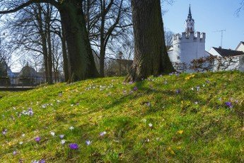 Park in Schrobenhausen (Bavaria) with spring flowers