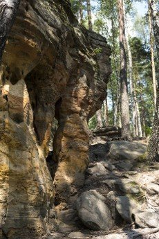 mushroom rock formation made from sandstones inside of a forest during summer season in piekielko nature reserve in Poland