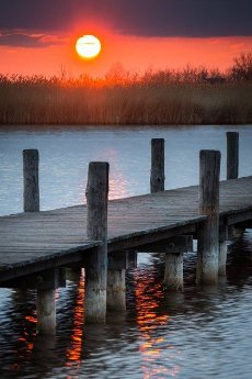 Morning sunrise at a jetty at lake Neusiedlersee in Burgenland