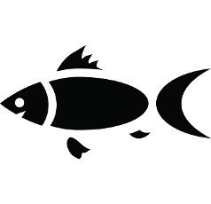 Fish icon in simple style on a white background