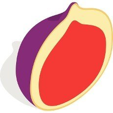 Half of fig fruit icon in isometric 3d style on a white background