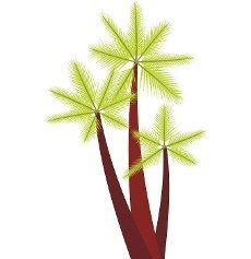 Three tropical palm trees icon in flat style isolated on white background. Flora symbol