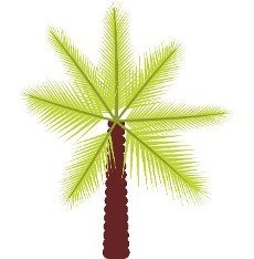 Big palm tree icon in flat style isolated on white background. Flora symbol