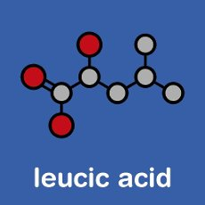 Leucic acid or HICA molecule. Stylized skeletal formula (chemical structure): Atoms are shown as color-coded circles: hydrogen (hidden), carbon (grey), oxygen (red