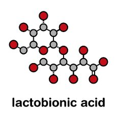 Lactobionic acid (lactobionate) molecule. Commonly used additive in food products, medicinal products and cosmetics. Stylized skeletal formula (chemical structure): Atoms are shown as color-coded circles: hydrogen (hidden), carbon (grey), oxygen