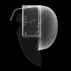 Fencing mask, X-ray