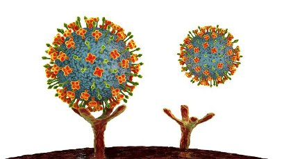 Illustration of Nipah viruses binding to receptors on human cells, an initial stage of Nipah infection. Nipah virus is zoonotic (transmitted to humans from animals) and was first found in Malaysia and Singapore in people who had close contact with