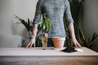 Man gardening while standing by table at home
