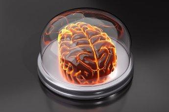 Three dimensional render of human brain in glass jar