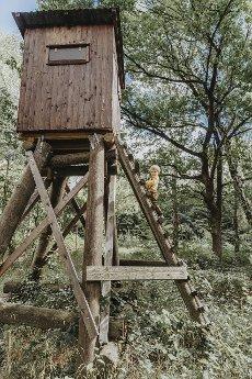 Preschooler boy climbing ladder of high seat in forest