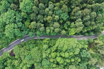 (200531) -- BEIJING, May 31, 2020 (Xinhua) -- Aerial photo taken on May 30,2020 shows a vehicle running in Changpoling Forest Park in Guiyang, southwest China\'s Guizhou Province. (Xinhua\/Ou Dongqu)